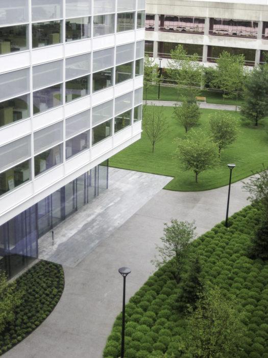 Novartis Campus Building 345 Heintges